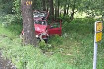 Při nárazu do stromu u Starého Města pod Landštejnem se vážně zranil řidič. Újmu na zdraví utrpěli i dva spolujezdci.