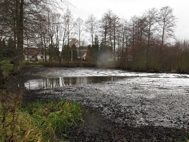 Bukovský rybník U Kovárny.