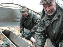 Rybáři loví Rožmberk.