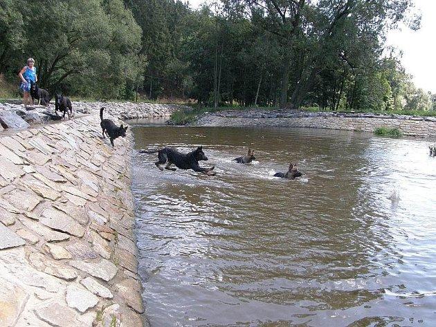 V současné době řeka Dyje na Dačicku tak idilicky jako vlouni touto dobou nevypadá.