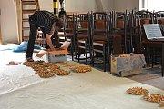 V třeboňském divadle dochází k rekonstrukci hlediště. Foto: Jitka Bednářová