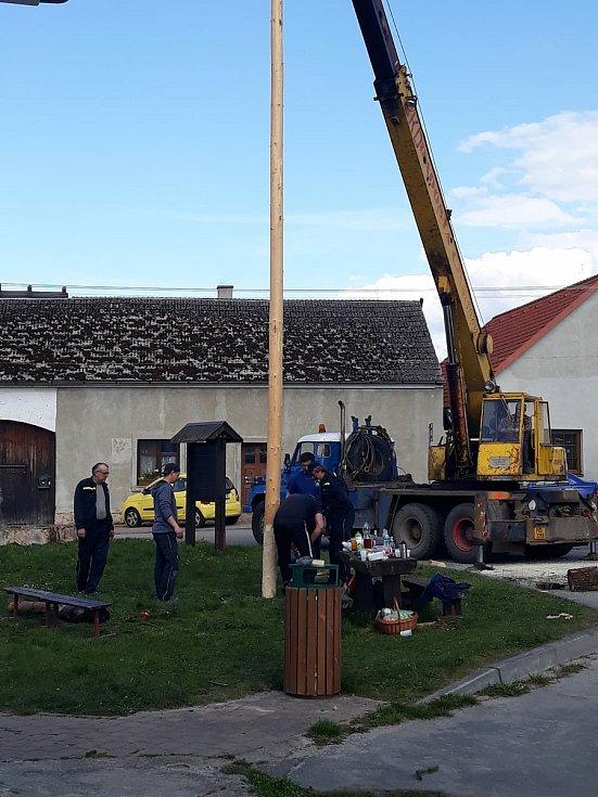 Stavění máje v Dunajovicích.