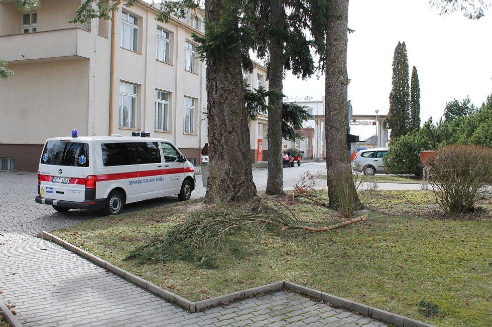 V hradecké nemocnici olámal vítr větve některých stromů.
