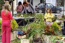 KVĚTINOVÁ BENEFICE.  Na sobotní předváděcí a prodejní akci si květinářky letos opět chystají nepřeberné množství přírodního materiálu, který uplatní  při vazbě květin.