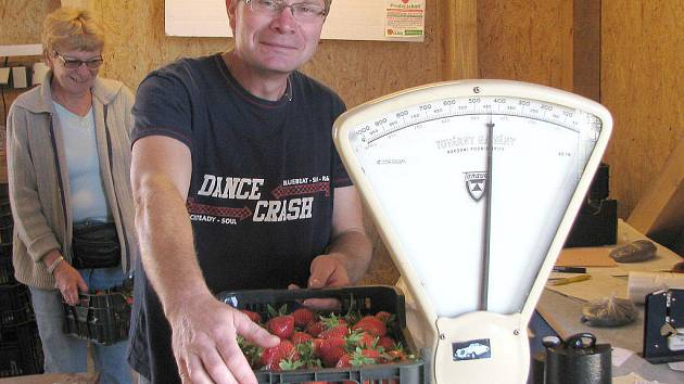 Zájemců o vlastnoruční sbírání jahod je v Dolní Pěně skutečně hodně.