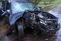Pohled na zdemolované osobní auto, ve kterém v sobotu v Lomnici nad Lužnicí zemřel řidič.