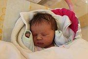 Sofie Seilerová, Jindřichův Hradec.Narodila se 21. října Hedvice a Miroslavu Seilerovým, vážila 3410 gramů a měřila 50 centimetrů.
