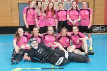 Republikové finále Sportovní ligy středních škol ve florbalu se za účasti šesti dívčích a stejného počtu chlapeckých týmů uskutečnilo v jindřichohradecké sportovní hale.