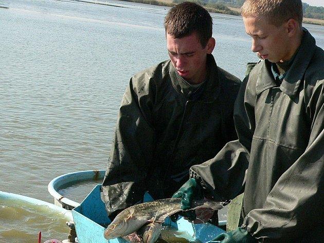 Na snímku jsou  Petr Šebela (vlevo) a David Svoboda.