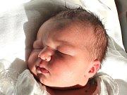 Julie Miloslava Holmanová se narodila 25. února Aleně a Miloslavu Holmanovým z Deštné. Měřila 51 centimetrů a vážila 3510 gramů.