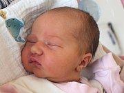 Viktorie Králová se narodila 20. března Lucii a Jiřímu Královým  z Jindřichova Hradce. Měřila 50 centimetrů a vážila 3450 gramů.