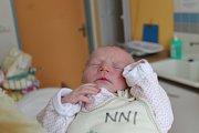Stela Hokrová, Chotěmice.Narodila se 16. listopadu Daně a Janu Hokrovým, vážila 2000 gramů a měřila 44 centimetrů.