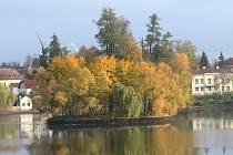 Rybník Vajgar v Jindřichově Hradci.