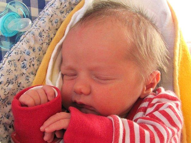 Jan Novák se narodil 18. listopadu Janě Novákové a Michalu Horákovi z Jindřichova Hradce. Měřil 49 centimetrů a vážil 3310 gramů.
