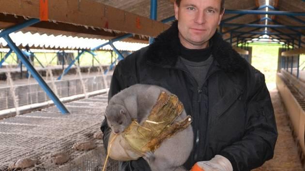 Kožešinová farma ve Velkém Ratmírově. Majitel David Vojtíšek.