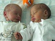 Rozálie a Matěj Novotní se narodili 2. února Lence Jirků a Petru Novotnému z Jindřichova Hradce.  Rozálie měřila 46 centimetrů a vážila 2200 gramů, Matěj měřil 46 centimetrů a vážil 2100 gramů.
