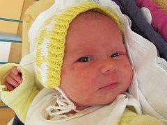 Ivanka Pacholíková se narodila 31. března Lence a Janu Pacholíkovým z Vlčic. Vážila 3110 gramů, měřila 48 centimetrů.