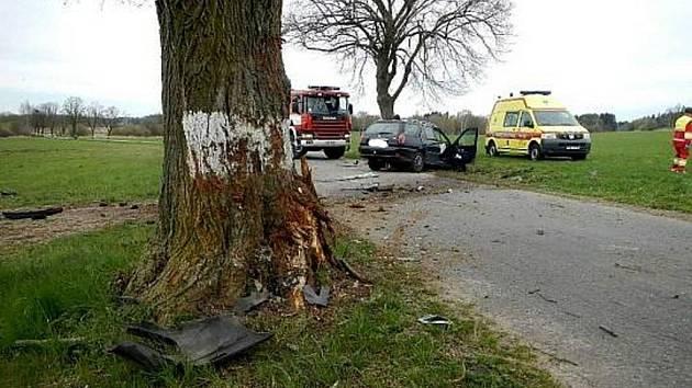 Stromy lemující silnice jsou pro řidiče nebezpečnou pevnou překážkou. Každá pátá smrtelná nehoda je po nárazu do stromu.