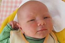 Steve Šelong se narodil 19. srpna Jarmile Šelongové a Xanderu Hoogendijkovi z Jindřichova Hradce. Vážil 3950 gramů a měřil 52 centimetrů.