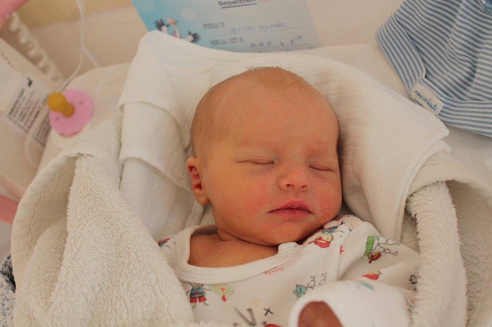 Vojtěch Adamec, Deštná.Narodil se 14. října Haně Václavíkové a Liboru Adamcovi, vážil 2920 gramů a měřil 48 centimetrů.