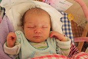 Lucie Semseiová se narodila 6. srpna Lucii Semseiové a Janu Dírovi z Jindřichova Hradce. Měřila 47 cm a vážila 2930 gramů.