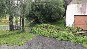 Bouřka ničila také ve Světcích na Jindřichohradecku. Neušetřila ani slunečník nebo vzrostlé stromy.