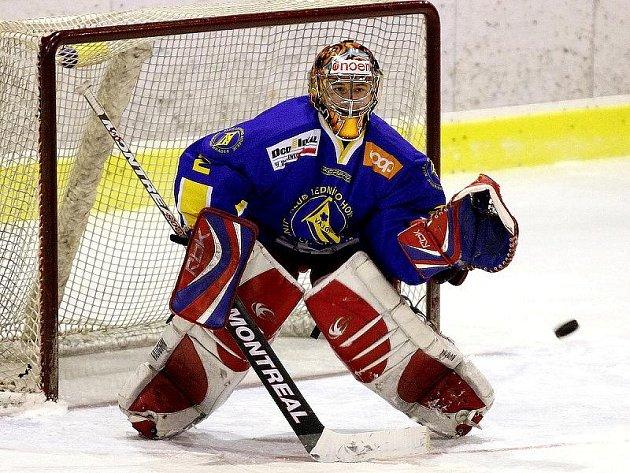 První polovinu středečního utkání v Milevsku odchytal v dresu Vajgaru gólman Martin Hnízdil, který je kmenovým hráčem českobudějovické extraligové juniorky.