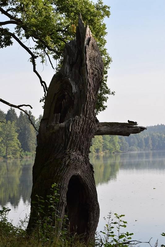 Monika Šavlová z Kladrub u Stříbra ráda objevuje krásy jihu Čech.