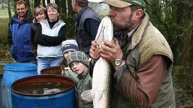 Rybářské žně v Sedle