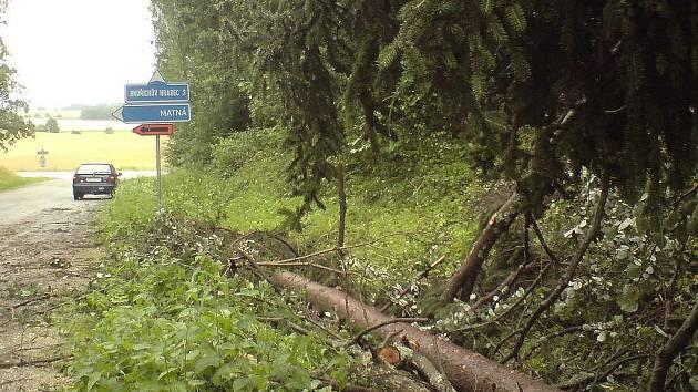 V bouřce, která se v pátek v noci přehnala nad Jindřichohradeckem, zůstaly vyvrácené a popadané stromy. Jedním z míst, kde bouřka nejvíce řádila, byla oblast od Jemčiny přes Hatín po Buk.