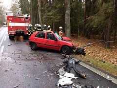 Střet osobního auta s kamionem u Majdaleny si vyžádal život řidičky.