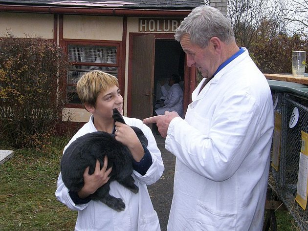 Na třeboňské výstavě drobného hospodářského zvířectva pomáhal i malý Petr Holický. Na snímku naslouchá radám předsedy základní organizace Rudolfa Arleta.