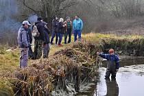 Rybáři lovili rybník u Dobrotína u Starého Města pod Landštejnem.