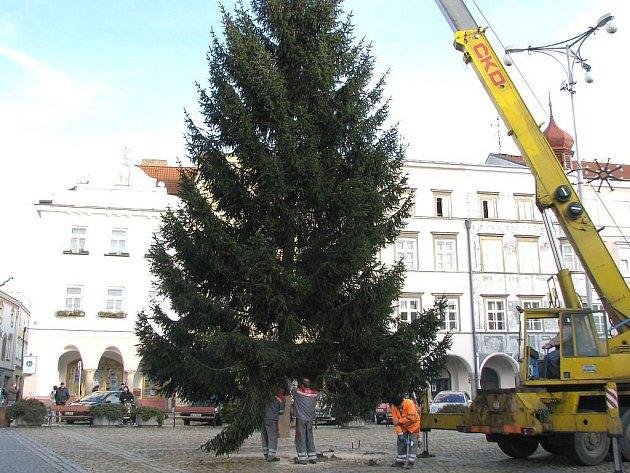 Stavění vánočního stromu na jindřichohradeckém náměstí Míru.