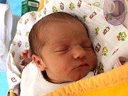 Alžběta Bartošková se narodila 17. června Alžbětě Mackové a Aleši Bartoškovi z Markvarce. Měřila 49 centimetrů a vážila 3070 gramů.