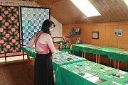 Výstava Výtvarníci Deštenska a širokého okolí je k vidění v deštenském kulturním domě.