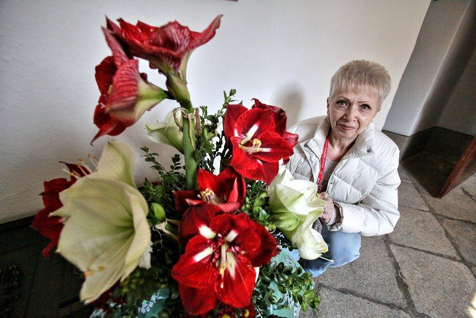 Třeboňské amarylis letos zdobí zámek po vzoru dvorního umlěce Arcimolda. Na snímku Anna Pešíčková.
