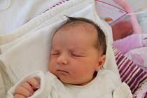 Laura Skipalová se narodila 16. prosince Vlastě a Karlu Skipalovým z Kardašovy Řečice. Měřila 47 cm a vážila 3420 gramů.