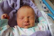 Ella Němečková se narodila 18. března Janě Budovičové a Zdeňku Němečkovi z Kamenice n. Lipou. Měřila 48 cm a vážila 2880 gramů.