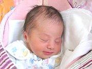 Tereza Šustrová se narodila 5. ledna Petře a Radkovi Šustrovým z Veselí nad Lužnicí. Měřila  51 centimetrů a vážila 3192 gramů.