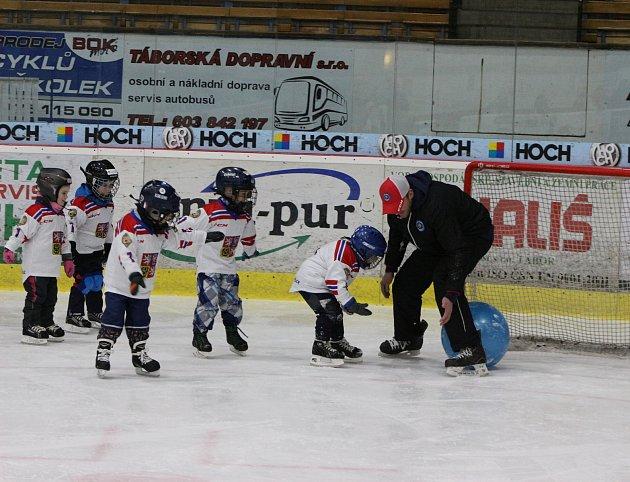 Týden hokeje aneb Pojď hrát hokej v neděli dorazí do Jindřichova Hradce.