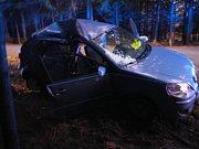 U Blažejova dostalo na namrzlé vozovce auto smyk a narazilo do dvou stromů. Zranilo se pět lidí.