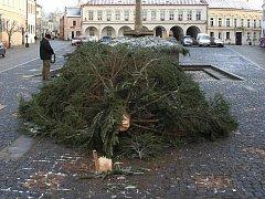 Nápor vichřice nevydržel vánoční strom na náměstí ve Slavonicích. Při pádu naštěstí nikoho nezranil.