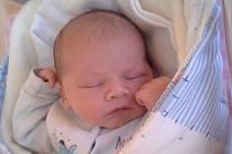 Tomáš Novák se narodil 26. ledna ve 21 hodin a 52 minut Elišce a Michalovi Novákovým ze Skrýchova. Vážil 4220 gramů a měřil 53 centimetrů.