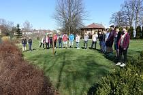 Žáci v Kunžaku vysadili krokusy na památku židovským obětem.