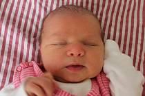 Lada Hřavová se narodila 9. června Michaele Fiedlerové a Aleši Hřavovi z Jindřichova Hradce. Měřila 50 centimetrů a vážila 3660 gramů.