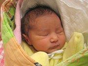 Veronika Miková z Nové Včelnice se narodila 14. listopadu 2013 Nikole Mikové a Janu Ferkovi. Vážila 2800 gramů a měřila 45 centimetrů.