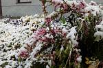 V Jindřichově Hradci 28. dubna nasněžilo.