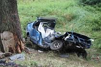 Ve čtvrtek dopoledne u Člunku narazilo osobní auto do stromu. Ve vraku zahynula spolujezdkyně.