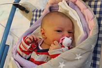 Anežka Pichová, Políkno.Narodila se 7. ledna Anežce Černé a Petru Pichovi, vážila 3 570 gramů a měřila 51 centimetrů.